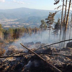 РИОСВ–Пазарджик засилва мерките за предотвратяване на пожари в защитените територии