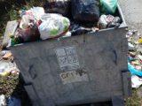 РИОСВ – Пазарджик се включва в почистването утре