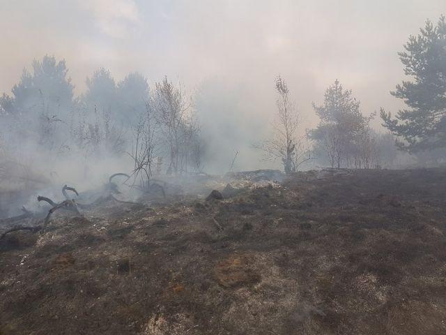 Огнеборци гасиха пожар с хеликоптер навръх празника си