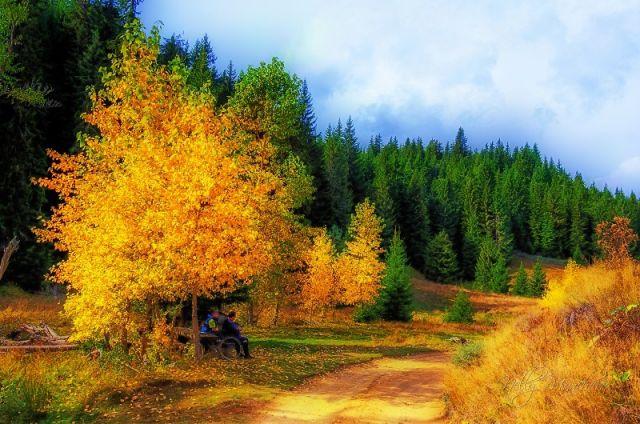Прогноза за времето за 10 октомври