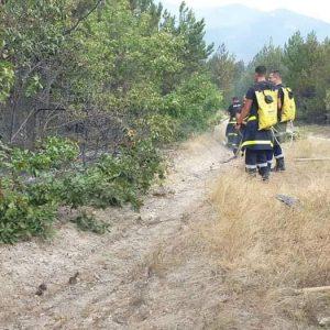30 огнеборци овладяха голям пожар край Горно Вълшило