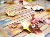 Прогноза за времето за 21 ноември