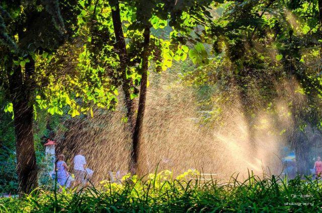 Прогноза за времето за 12 август: Опасни жеги